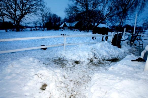Efter en kall men inte så snöig vinter har vi numera ganska mycket snö, och mer lär det vara på väg.